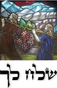 Torah 101: Shlach Lecha