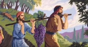 Torah 101-Shlach Lecha