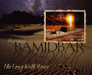 Bamidbar (Audio Portion)